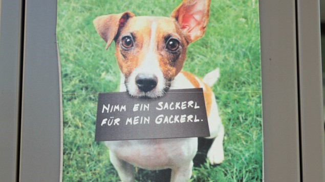 Hund Sackerl
